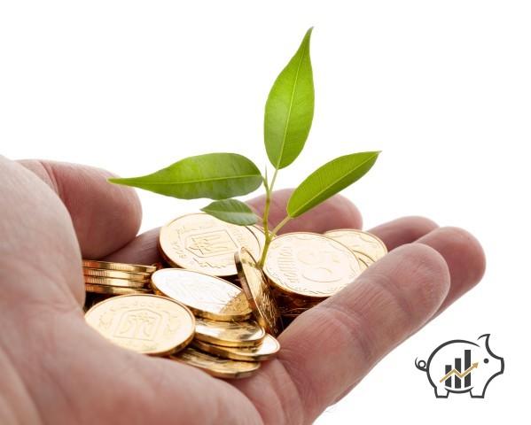 Investimento in capitale di rischio
